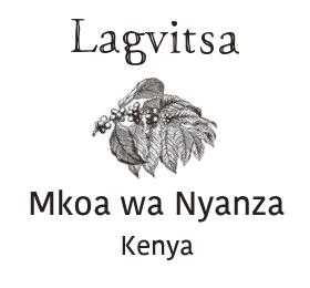 Kenya Nyanza