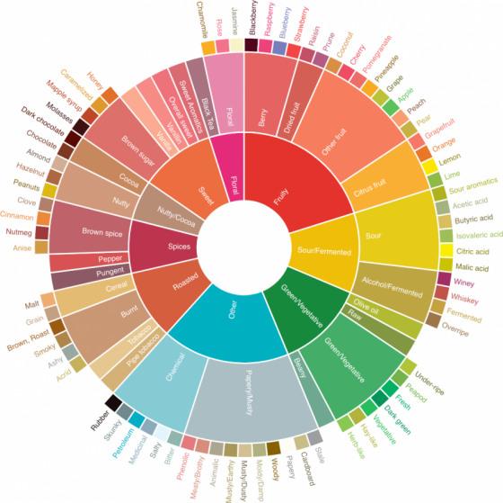 Колесо вкусов кофе / SCAA Coffee Taster's Flavor Wheel